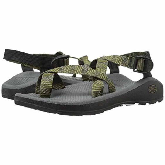 Chaco Z Cloud 2 Salute Forest J105977 (Men's)